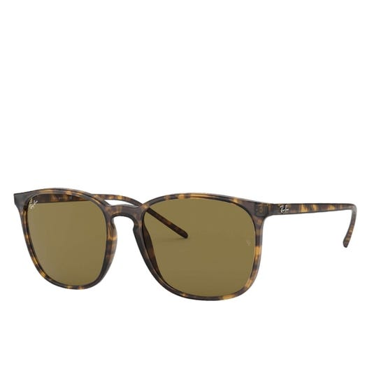 Ray-Ban Brown Lens Classic Tortoise Shell Sunglasses